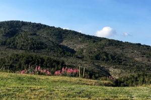 la finca hills